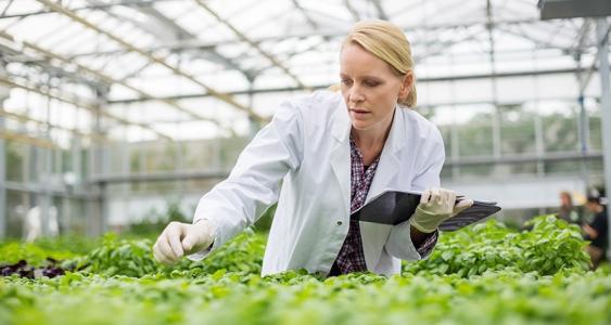 Wissenschaftsförderung – Wissen für die Gestaltung der Zukunft