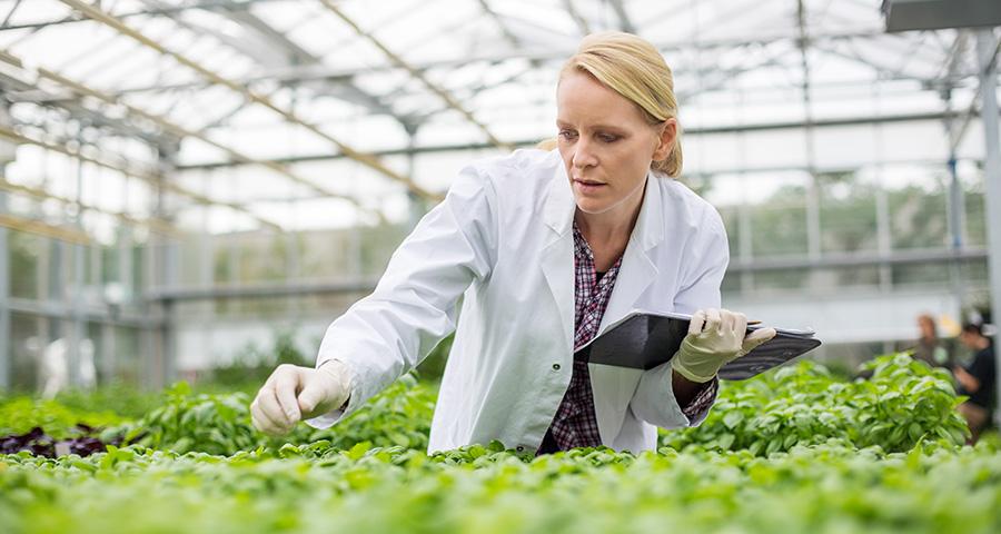 Wissenschaftsförderung – Wissen für die Gestaltung der Zukunft | DSGV - Bericht an die Gesellschaft